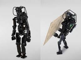 a type of humanoid showing what they can do