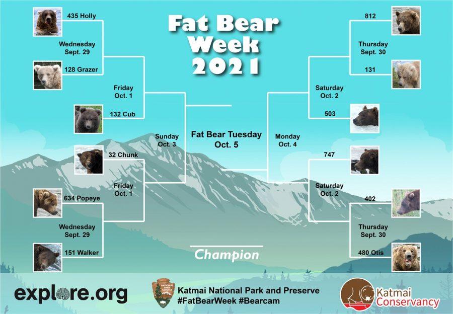 The official bracket of Fat Bear Week 2021